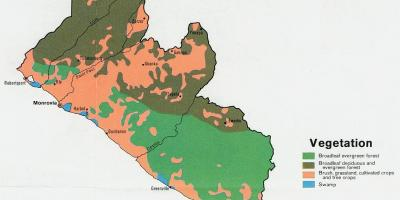 Map of vegetation map of Liberia